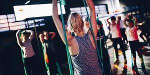 Fitness Classes at Equilibrium Fitness